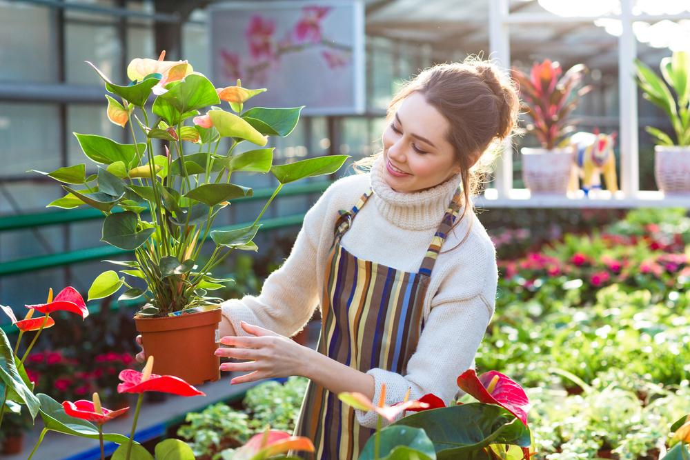 Grow your employee Health Benefits